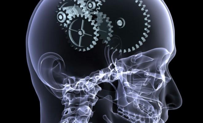 5 datos sobre el funcionamiento de la memoria