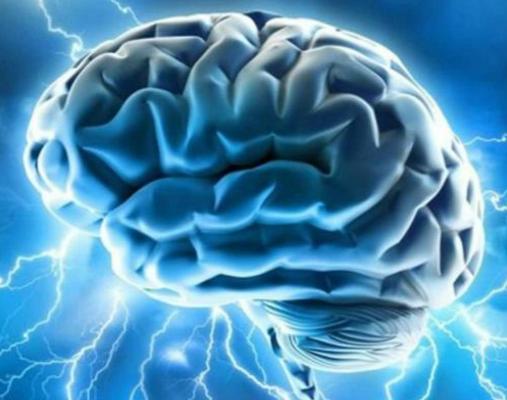 El cerebro necesita