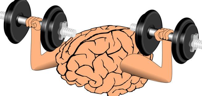 reforzar nuestro cerebro