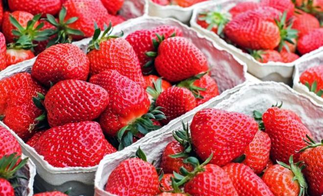 fresas para la salud