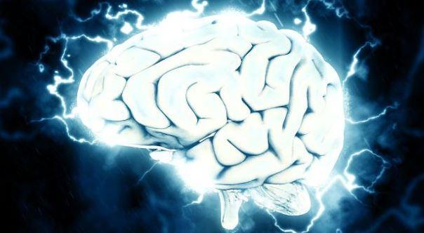 Por primera vez conectan un cerebro humano a Internet