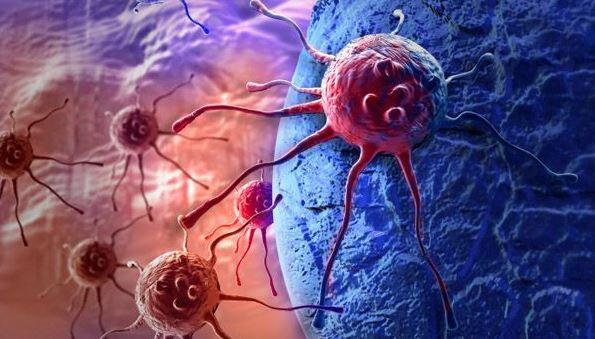 El cáncer se autodestruye sin afectar a las células sanas