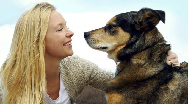 Si le hablas a tu perro la ciencia tiene algo que decirte