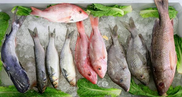 Estos son los pescados más sanos