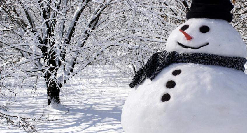 Curiosidades del muñeco de nieve que te sorprenderán